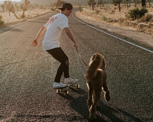 Skating with Dog