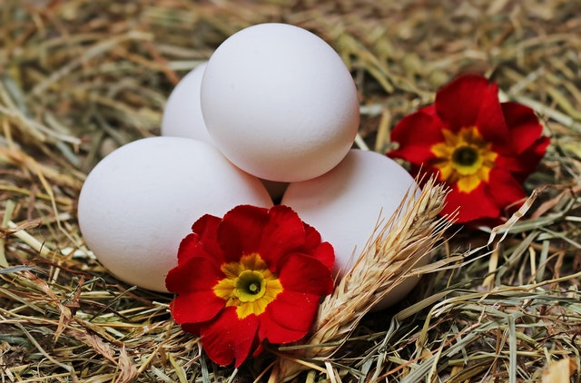 10 Superb Methods to Get pleasure from Boiled Eggs