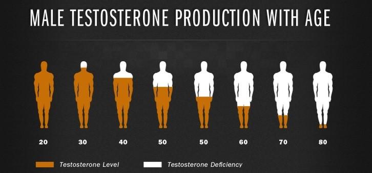 Testosterone Level