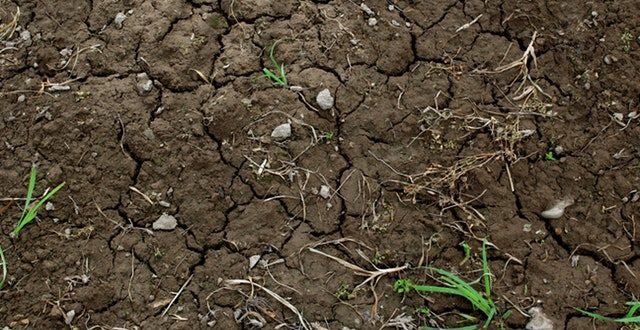 Soil and Groundwater