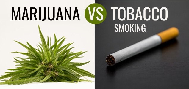 Marijuana Smoke vs. Cigarette Smoke