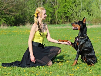 Pets and your health Featured Image