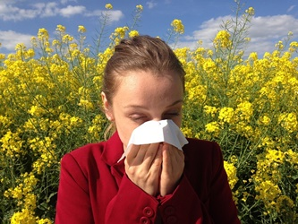 Sneezing Allergy Featured Image