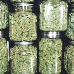 How to Open a Marijuana Dispensary and Make High Profits