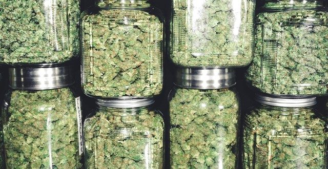 Marijuana Buds in Glass Jar Stack