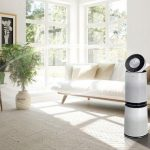 6 Reasons You Need an Air Purifier in Your Home