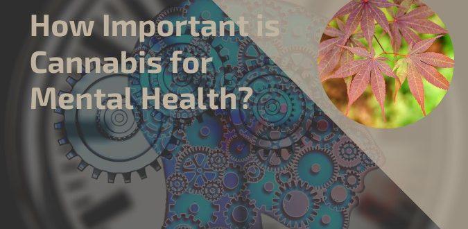Cannabis for Mental Health
