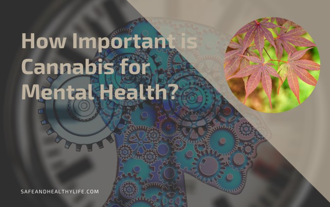 Cannabis for Mental Health