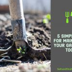 5 Simple Tips for Maintaining Your Gardening Tools