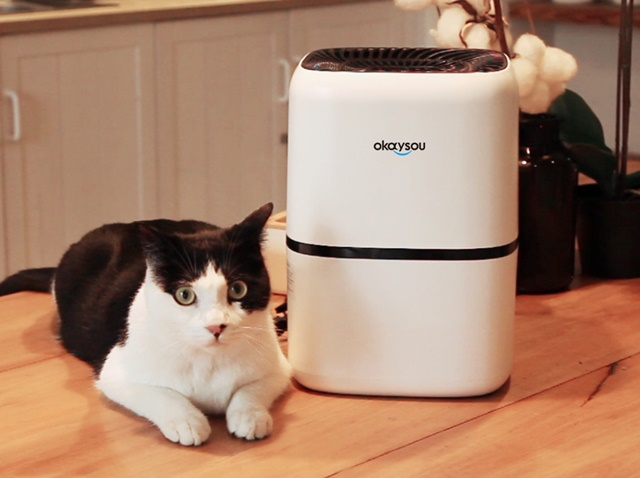 Okaysou AirMic4S Air Purifier