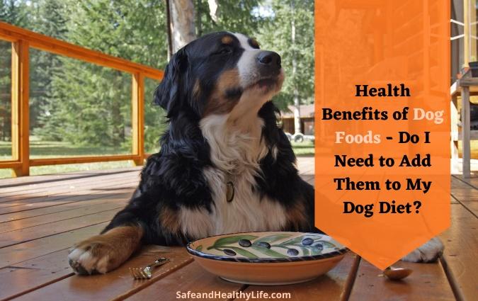 Health Benefits of Dog Foods