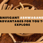 Significant Ashwagandha Advantages for You to Explore