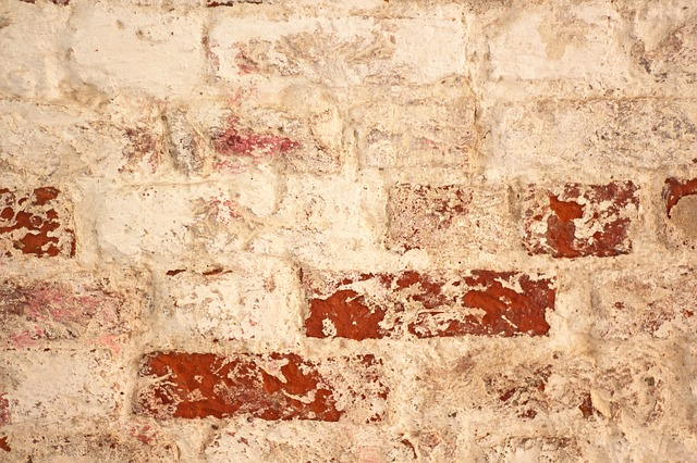 Dampness of Wall Paint