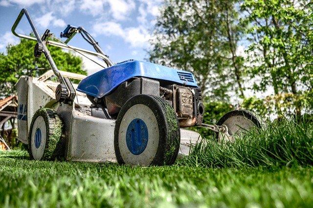 Do a Second Trim - Grass Cutting