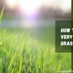 [7 Gardening Hacks] How to Cut Very Long Grass