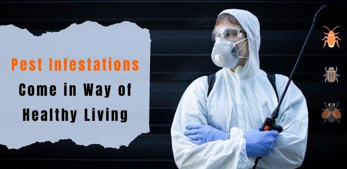 Pest Infestations