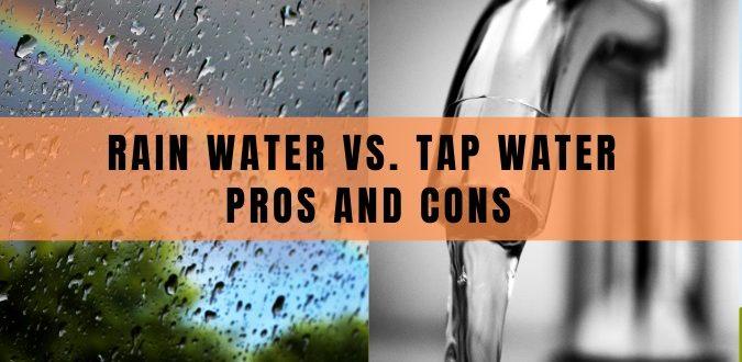 Rain Water vs. Tap Water