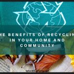 The Benefits Of Recycling In Your Home And Community