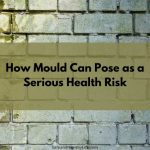 How Mould Can Pose as a Serious Health Risk